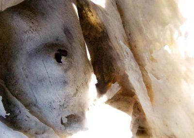 Bones of sculptures drying in the sun III
