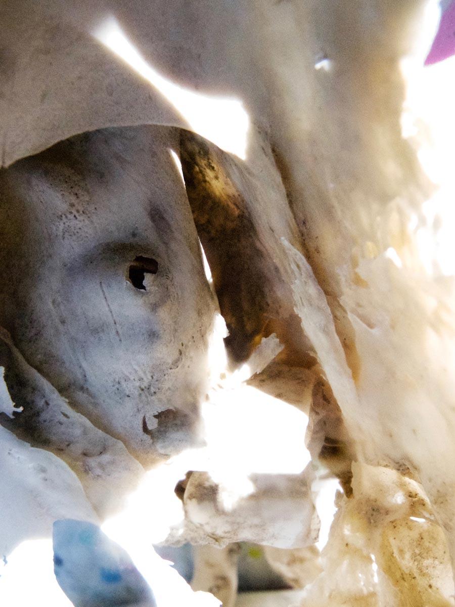 Bones of sculptures drying in the sun IV - Dimension Fantasmic